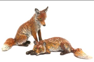 Fox lying -Hunting And Horses