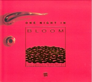 One night in Bloom - Lounge, Chill out, Electronica, Compilation-Electronic